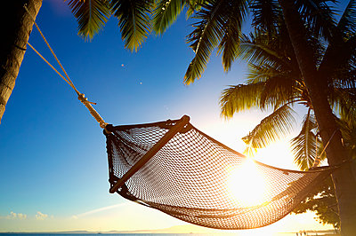Hammock hanging between palm trees on tropical beach - p555m1415482 by Colin Anderson