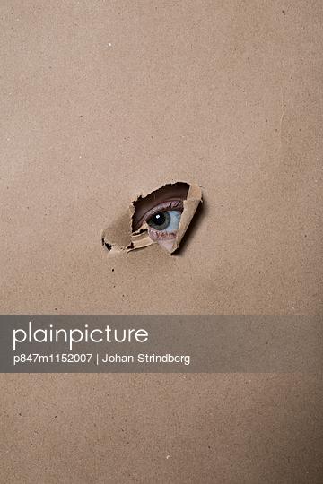p847m1152007 von Johan Strindberg