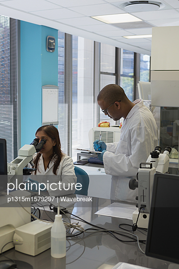 Scientists doing experiment in lab - p1315m1579297 by Wavebreak