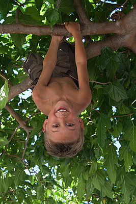Boy in a tree - p0460764 by Hexx