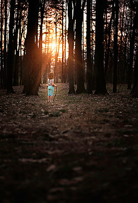 Rear view of girl standing in forest during sunset - p1166m1509121 by Cavan Images
