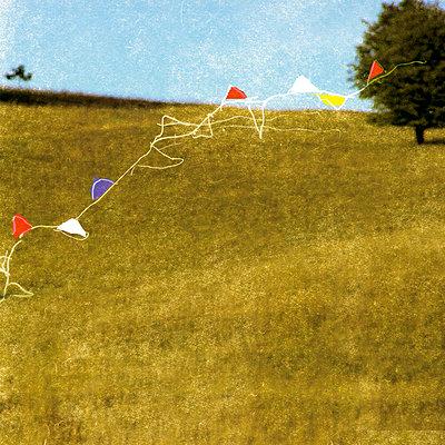 Sommerwiese mit Fähnchen - p1650m2230526 von Hanna Sachau
