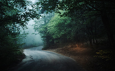 Winding road in forest - p555m1504216 by Dmitry Ageev