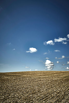 Harvested field with blue sky and clouds - p1312m2279017 by Axel Killian