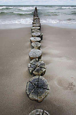 Germany, Fischland Darss Zingst, wooden stakes on the beach - p300m1023467f by Thomas Jäger