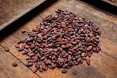 Costa Rica, La Virgen de Sarapiqui, Drying Cocoa Beans, Tirimbina Biological Reserve - p651m860511 by John Coletti photography