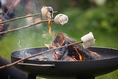 Roasting marshmallows - p788m1165419 by Lisa Krechting