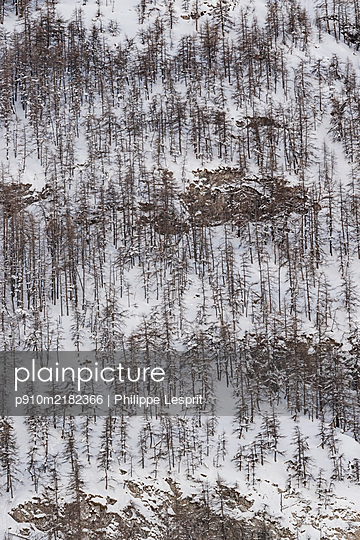 France, Snowy landscape - p910m2182366 by Philippe Lesprit