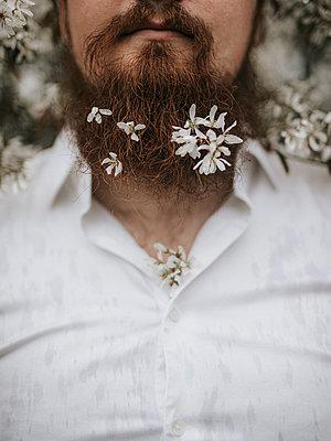 Bearded man in flower bushes - p1507m2278845 by Emma Grann