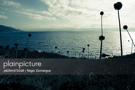 Korsika - p829m972348 von Régis Domergue