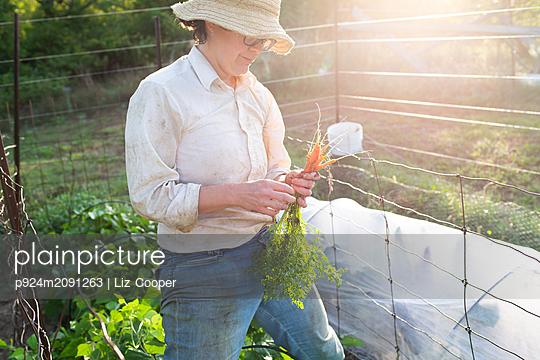Mature female gardener with homegrown carrots in garden - p924m2091263 by Liz Cooper