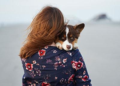Hundewelpe auf dem Arm - p1124m1223973 von Willing-Holtz
