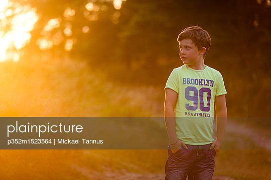 p352m1523564 von Mickael Tannus