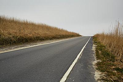 Straße durch die Dünen - p1200m1143646 von Carsten Görling
