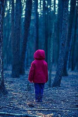 Alone in a forest - p1228m1540178 by Benjamin Harte