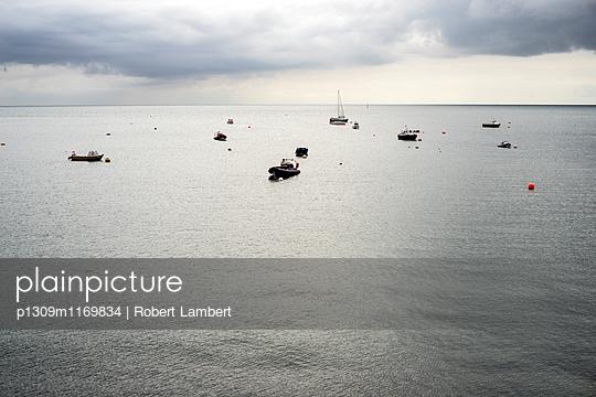 p1309m1169834 von Robert Lambert