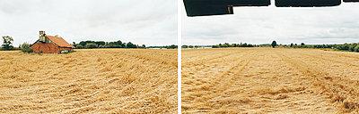 Feld - p1205m1020933 von Annet van der Voort
