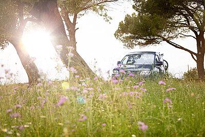 Countryside  - p454m2158738 by Lubitz + Dorner