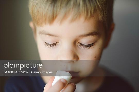 p1166m1555262 von Cavan Images