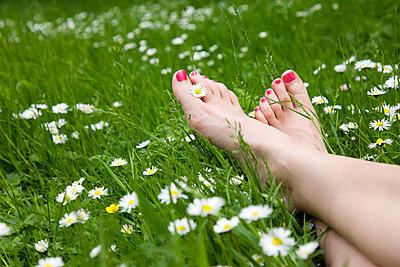 Barfuß im Gras - p1231m1043061 von Iris Loonen