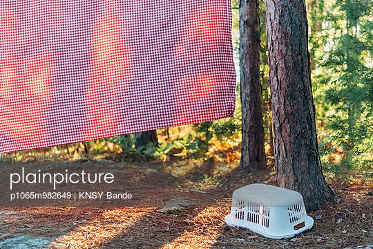 Wäsche auf der Leine, Chandos Lake, Kanada - p1065m982649 von KNSY Bande