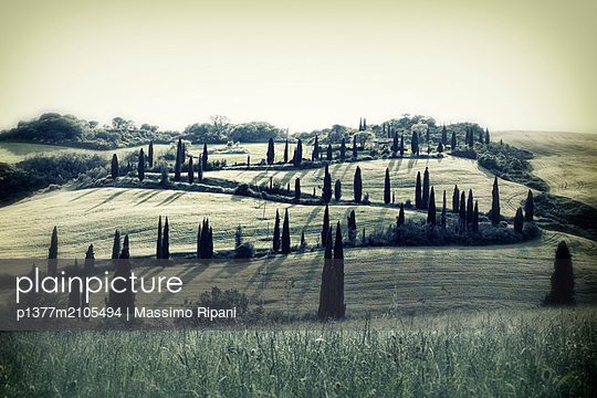 Italy, Tuscany, Siena district, Orcia Valley, Typical landscape - p1377m2105494 by Massimo Ripani