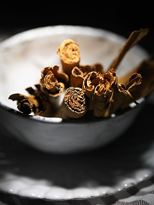 Cinnamon sticks in a white vintage bowl - p429m1106747f by Diana Miller