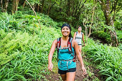 Hikers on Moanalua Valley Trail, Oahu, Hawaii - p924m2068785 by Rosanna U