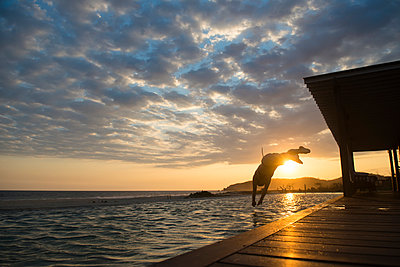 Woman diving to a pool at sunset in a small hotel in the coast of Oaxaca, Mexico. - p343m988725f by Marcos Ferro photography