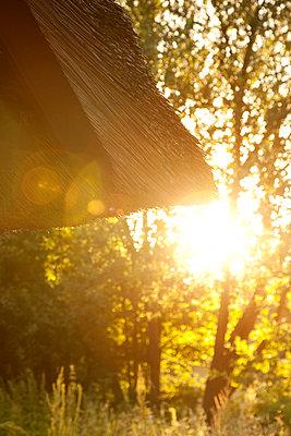 Sonnenuntergang - p382m1091316 von Anna Matzen