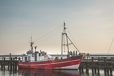 Germany, Warnemuende, Harbour, Fishing boat - p300m1129770f von Anke Scheibe