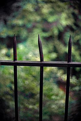 Fence - p1028m2132835 by Jean Marmeisse