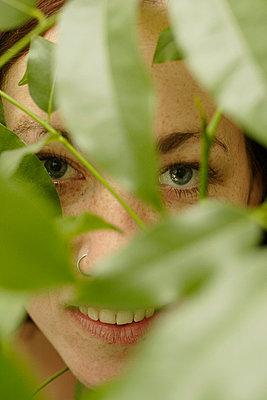 Behind plants - p5060118 by Julia Franklin Briggs