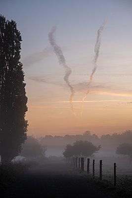 Sonnenaufgang, Spandauer Rieselfelder im Morgennebel - p739m2172868 von Baertels