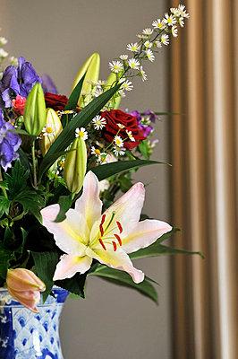Bunter Blumenstrauß - p949m658107 von Frauke Schumann