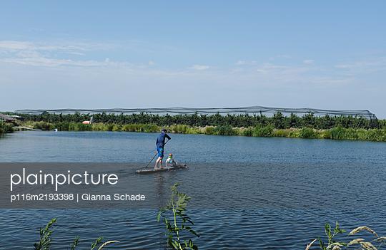 p116m2193398 by Gianna Schade