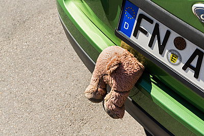Jammed teddy bear - p1177m1221035 by Philip Frowein