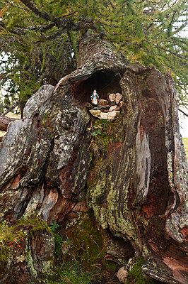 Madonna im Baum - p470m1090567 von Ingrid Michel