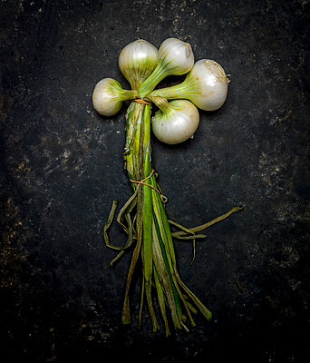 White onions - p813m1082919 by B.Jaubert