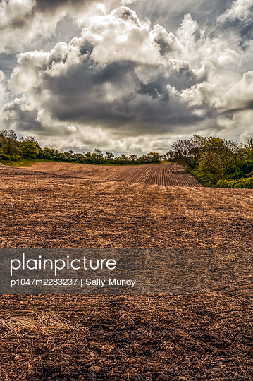 Large dark cloud above ploughed field - p1047m2283237 by Sally Mundy