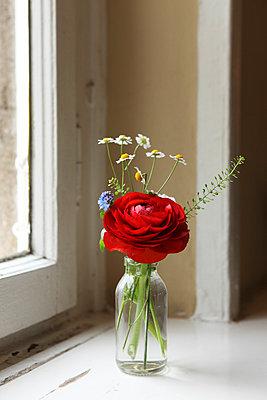 Blumen - p045m792939 von Jasmin Sander