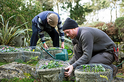 Two men working in garden, Bournemouth, County Dorset, UK, Europe - p1026m996460f by Patrick Frost