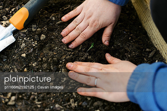 Woman planting the first crops of the season. - p1166m2192125 by Cavan Images
