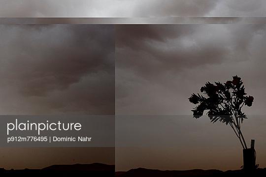 p912m776495 von Dominic Nahr