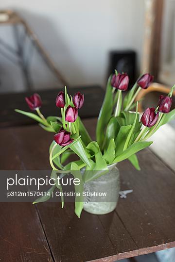plainpicture - plainpicture p312m1570414 - Tulips in vase - plainpicture/Johner/Christina Strehlow