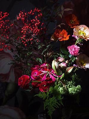 Blossom and clear dark - p1371m1425321 by virginie perocheau