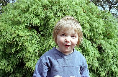 Vorm grünen Baume - p2290149 von Martin Langer