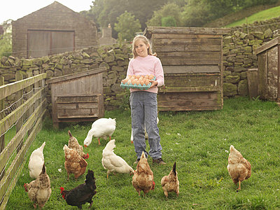 Girl Holding Tray Of Eggs With Hens - p4293964f by Monty Rakusen