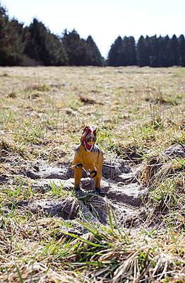 Dinosaur - p4320928 by mia takahara
