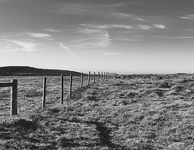Fence through pasture and farmland, open space - p1100m2164797 by Mint Images